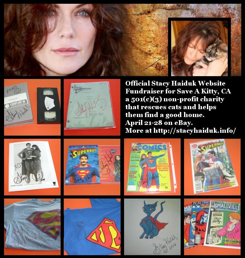 blog stacy haiduk auction 02